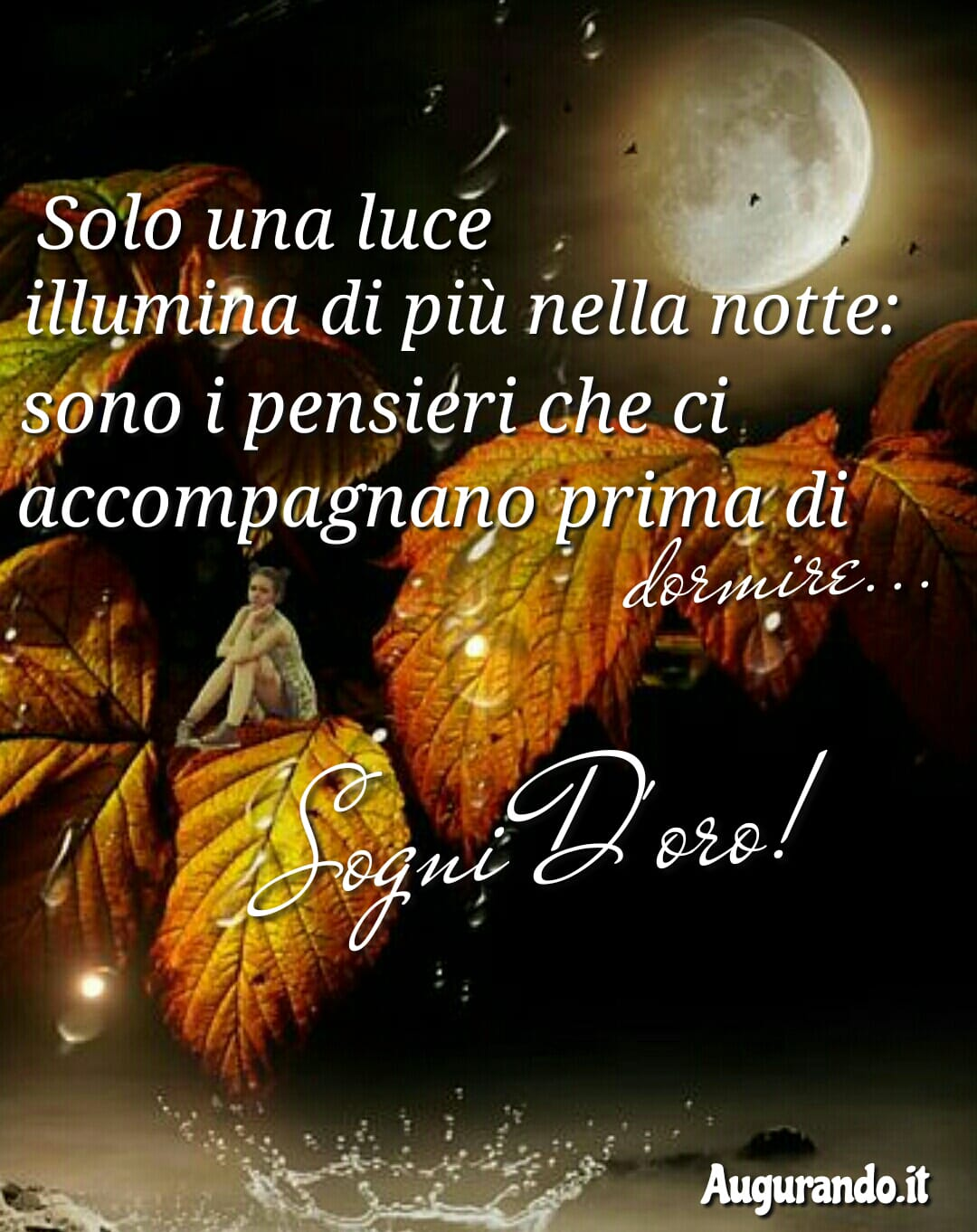 Buona notte, notte, dolce notte, dolcissima notte, serena notte, felice notte, sogni d'oro, dolci sogni, sogni, felici sogni