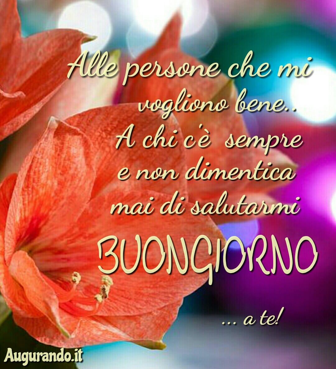 Buongiorno, giorno, buona giornata, felice giorno, immagini buongiorno, sereno giorno, dolce giorno, felicissima giornata, dolcissima giornata, lieto giorno, giornata splendida, buongiorno a te, buongiorno a tutti, buongiorno amore