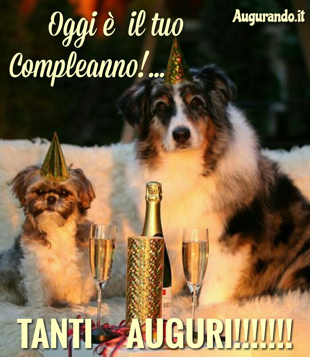 Buon compleanno, tanti auguri, compleanno, auguri, happy birthday, festa ridere, compiere gli anni,