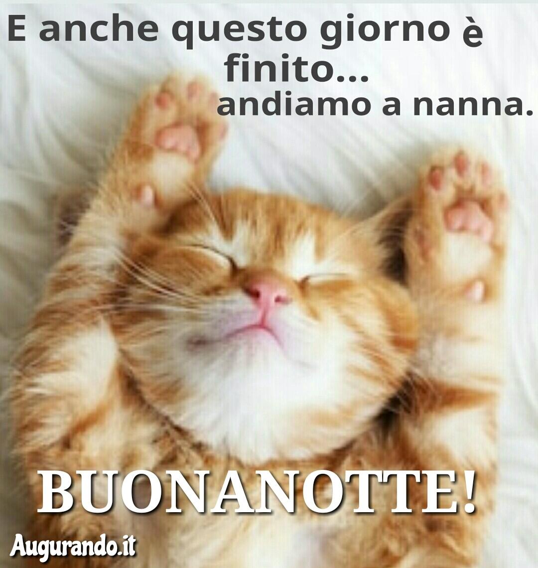 Buonanotte, notte, dolce notte, dolcissima notte, serena notte, sogni d'oro, felice notte, immagini buonanotte, sogni sereni, buonanotte amore, buonanotte a tutti, buonanotte a tutti