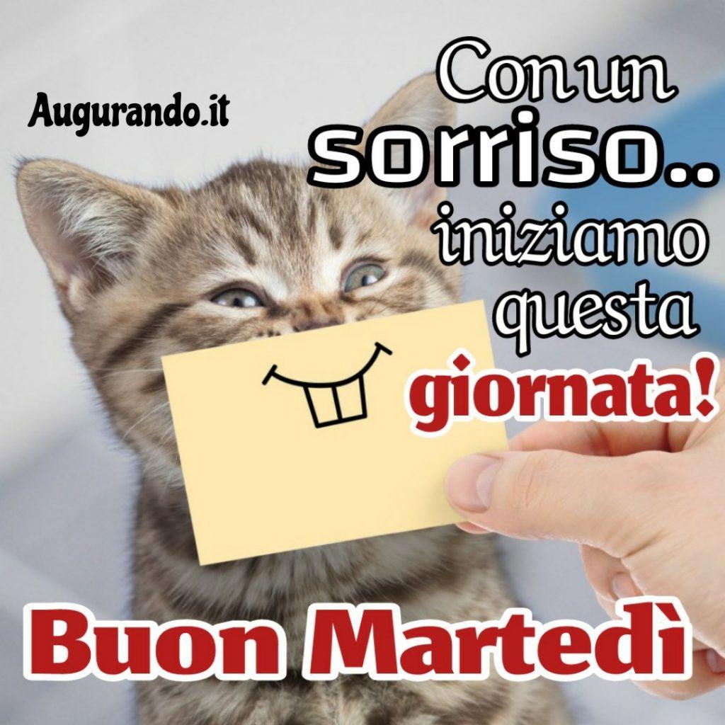 Qui i Saluti di MARZO   - Pagina 2 IMG-20210212-WA0012-1024x1024